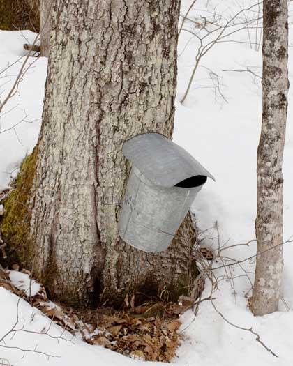 Vermont013